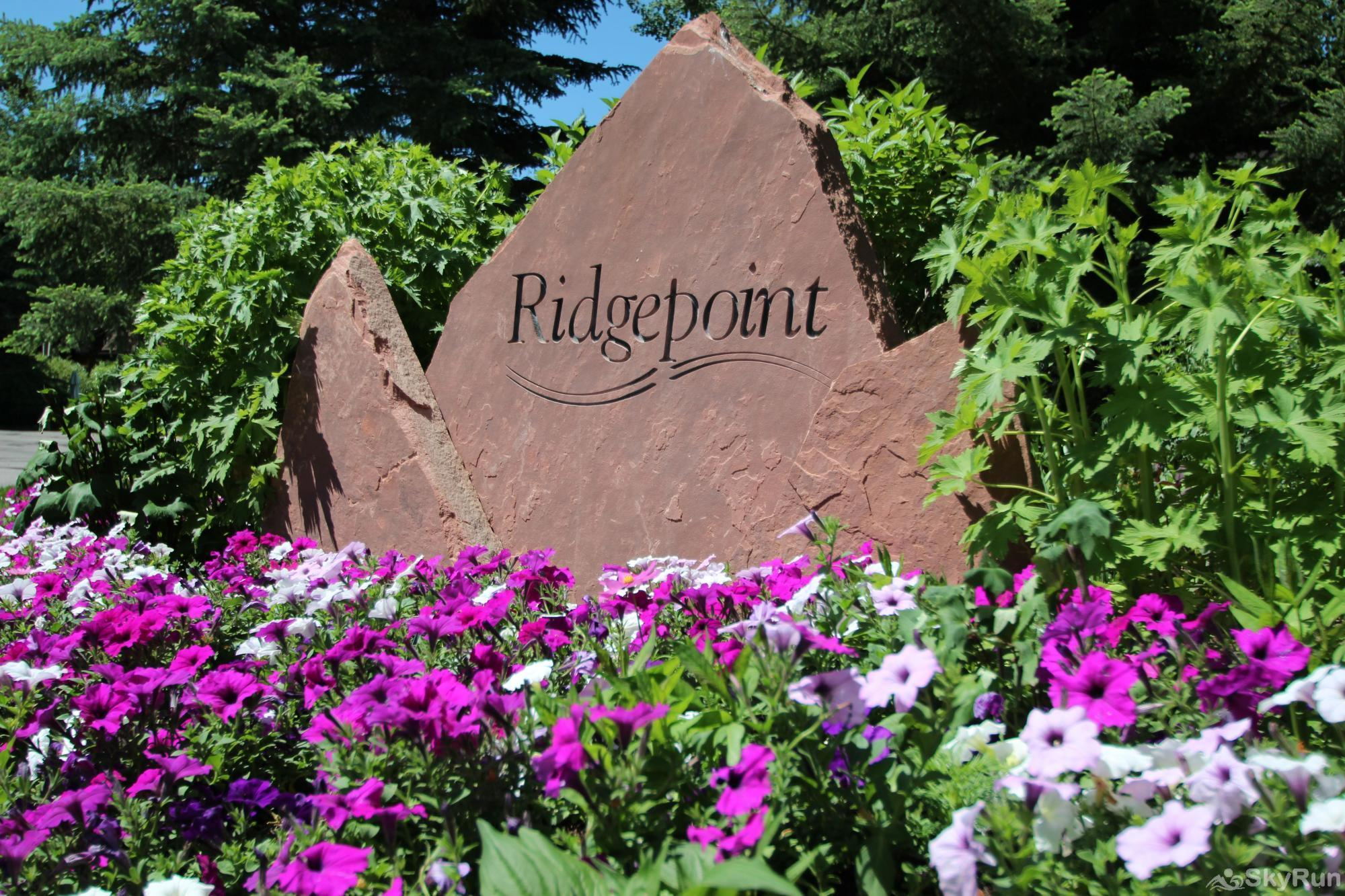 124 Ridgepoint Ridgepoint Townhomes!